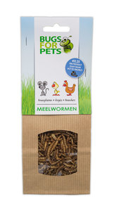 BugsforPets Meelwormen